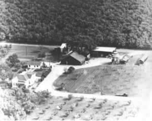 ¿Sabías qué Apple conservará la granja histórica que había dentro del nuevo Apple Park? 3