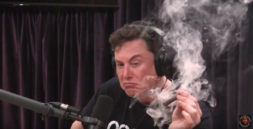 Sobre Elon Musk, el porro y la perspectiva 2