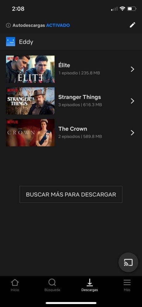 Smart Downloads iOs Netflix