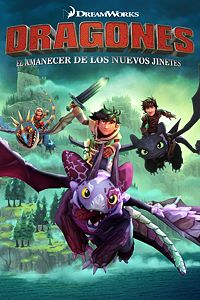 DreamWorks Dragons Dawn of New Rider