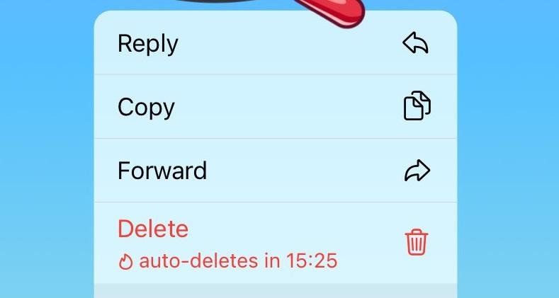 Telegram añade autoeliminación de mensajes en todos los chats e invitaciones que expiran 11